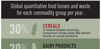 Datos del desperdicio alimentario en el mundo