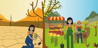 17 de junio. Día Mundial de Lucha contra la Desertificación y la Sequía